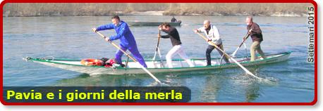 banner_pavia_merla_2015